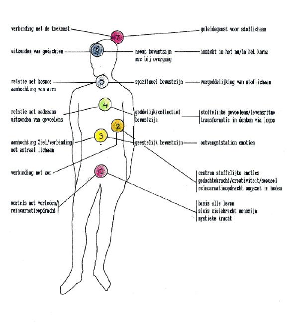 energie menselijk lichaam